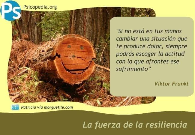 La fuerza de la resiliencia